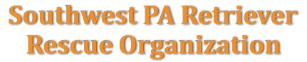 Southwest PA Retriever Rescue Organization